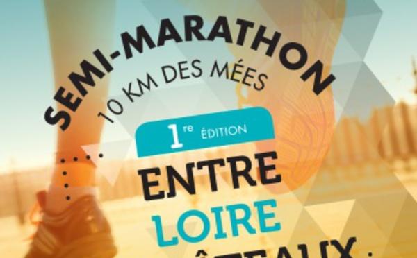 06-03-2016 – Semi-marathon entre Loire et châteaux (41)