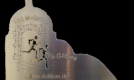 Les 7eme Foulees du château de Valençay 16 oct 2016