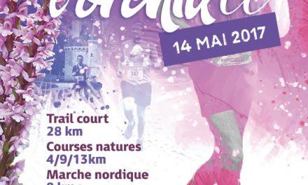 Trail de l'orchidée (37- St Epain) 14/05/17