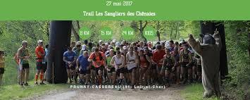 Les sangliers de chenaies (41) – 27/05/2017