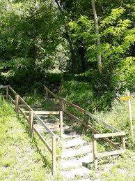Trail des durs a cuire 1/07/2018 (37)
