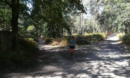 L'Imperial'Trail de fontainebleau
