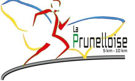 La prunelloise (Pruniers en Sologne 41) – 19/06/16