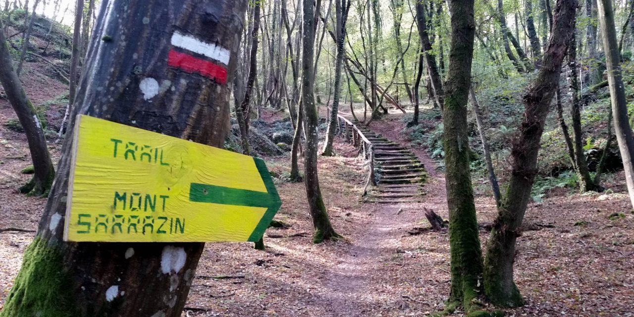 10-10-2016 – Trail du mont Sarrazin (Nemours – 77)