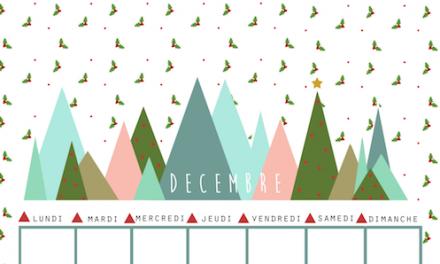 Le programme de décembre est enfin là……