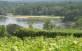 8-10-2017 – Trail des Bulles à Vouvray (37)