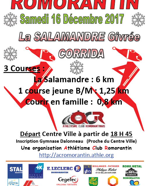 La salamandre givrée – 16/12/2017 Romorantin